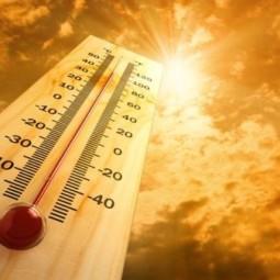 Ondata di caldo, attenti alla disidratazione. I consigli dell'Ausl