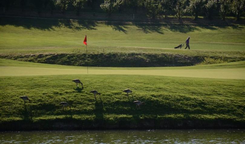 A Castel San Pietro Terme il prestigioso torneo Open di golf