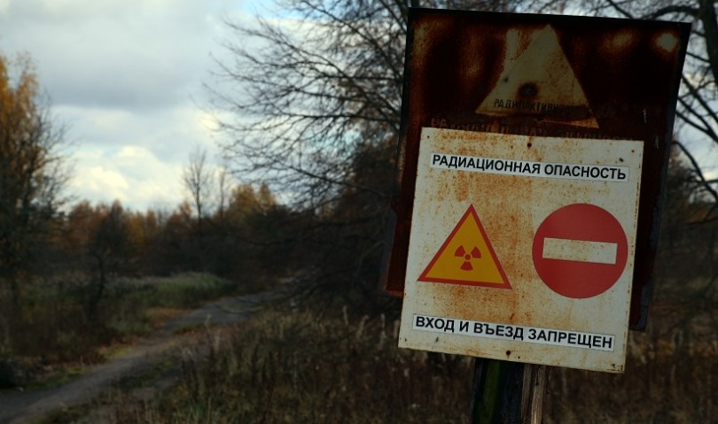 """Chernobyl 1986-2016. Quando da un disastro """"nascono i fiori"""""""