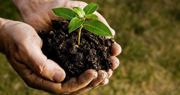 Dal Comune 50mila euro ad Agrifidi per favorire gli investimenti delle imprese agricole
