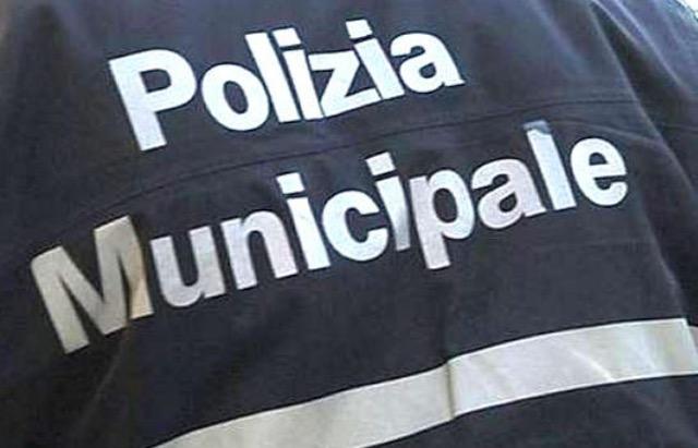 Imola, un arresto per resistenza a pubblico ufficiale. Tutte le operazioni della municipale