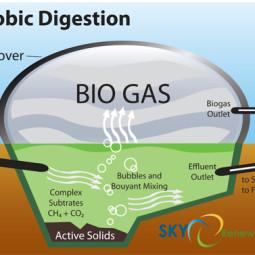 Impianto a biogas a Casalfiumanese: partita riaperta?