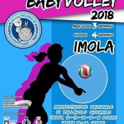 Il 2018 si apre con il grande torneo di baby volley