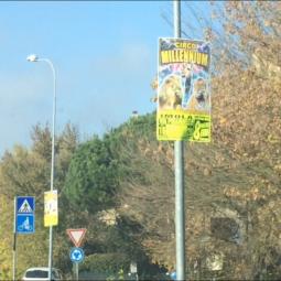 Circo in Città, la Lega segnala affissioni abusive